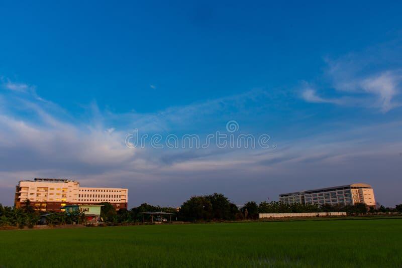 Skolan är närgränsande till risfälten royaltyfri fotografi