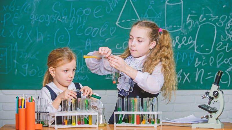 Skolautrustning f?r laboratorium Flickor p? skolakemikurs Skolalaboratoriumpartners Ungar som ?r upptagna med experiment royaltyfri foto
