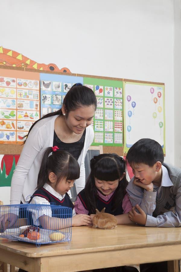 Skolbarn och lärare som spelar med älsklings- kanin i klassrumet arkivbilder