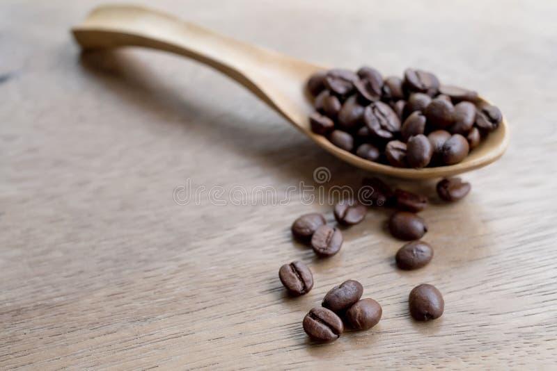 Skopa för kaffeböna vid träskeden royaltyfri foto