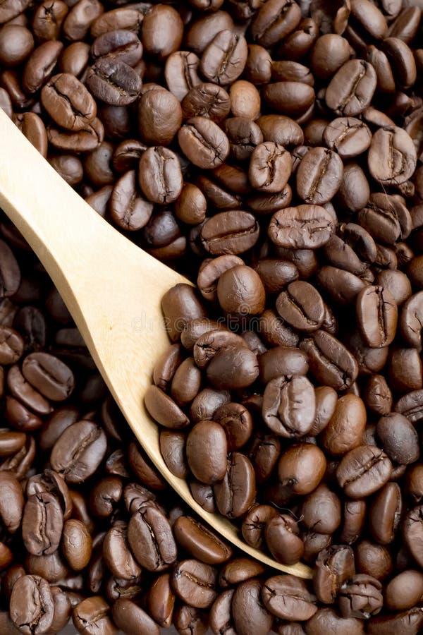 Skopa för kaffeböna vid träskeden arkivfoton