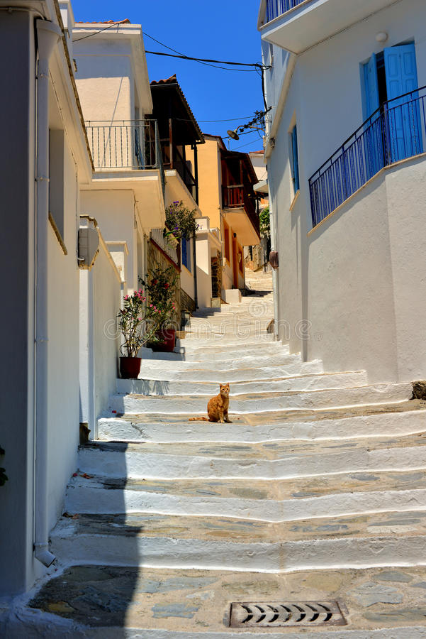 Download Skopelos Greece stock photo. Image of flower, architecture - 41792098