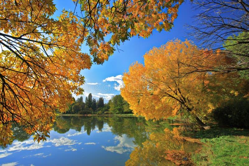 Skopje city park in autumn stock photo