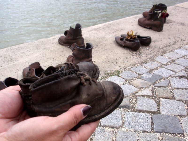 Skor på Donauen arkivbild
