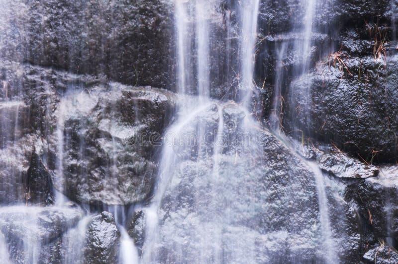 Skorra torrington connecticut för dammdelstatsparkvattenfallet arkivfoto
