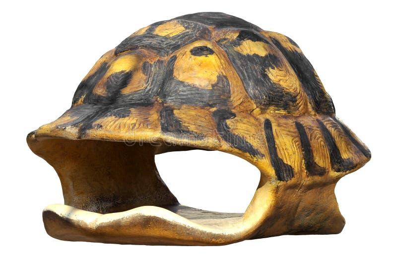 skorupy odosobniony tortoise obrazy stock