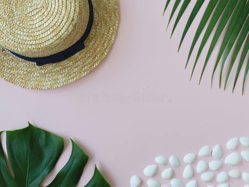 Skorupy, tropikalni liście i lato kapelusz na różowym tle, zdjęcia stock