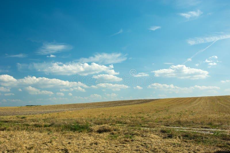 Skoszony pole na wzgórzu fotografia royalty free