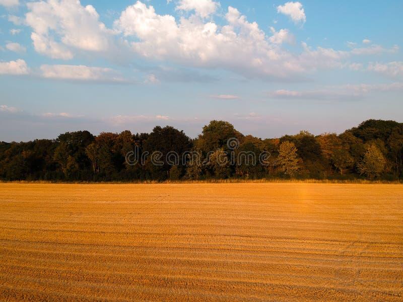 Skoszony pole w Niemcy z ładnym niebieskim niebem zdjęcia royalty free