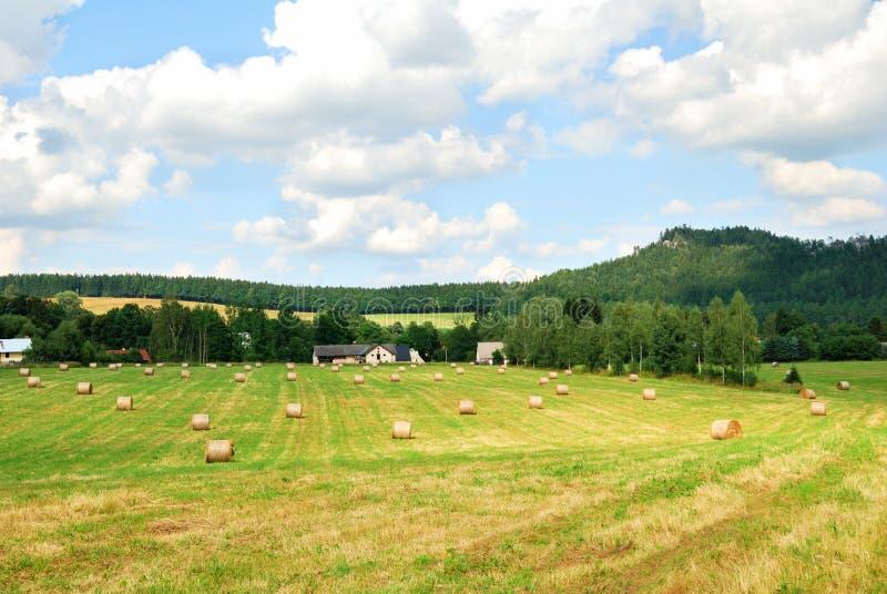 Skoszony rolny pole z belami siano zdjęcia royalty free