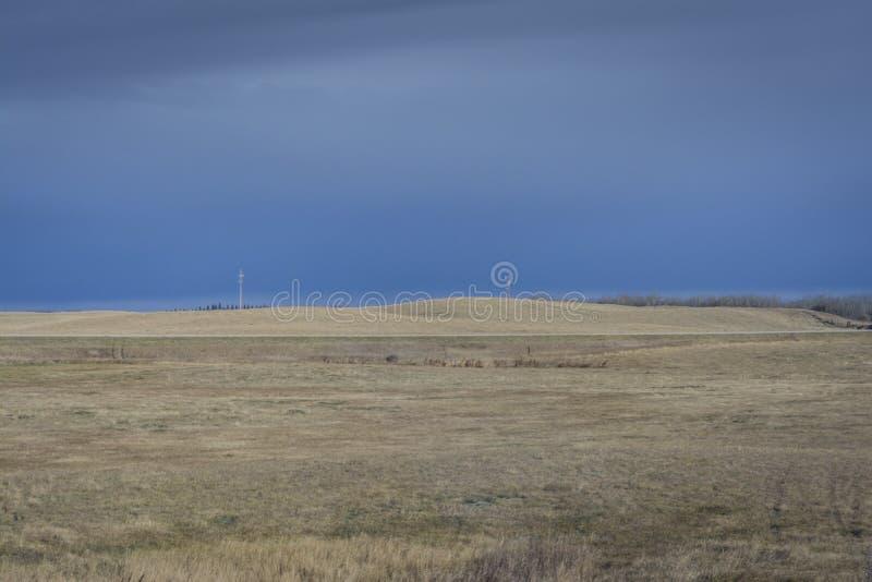 Skoszony siana pole w Manitoba obraz stock
