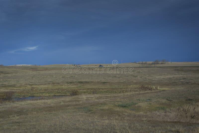 Skoszony siana pole w Manitoba zdjęcia stock