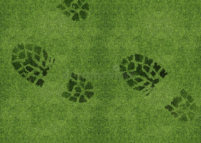 Skotryck på grön grässlätt royaltyfri illustrationer