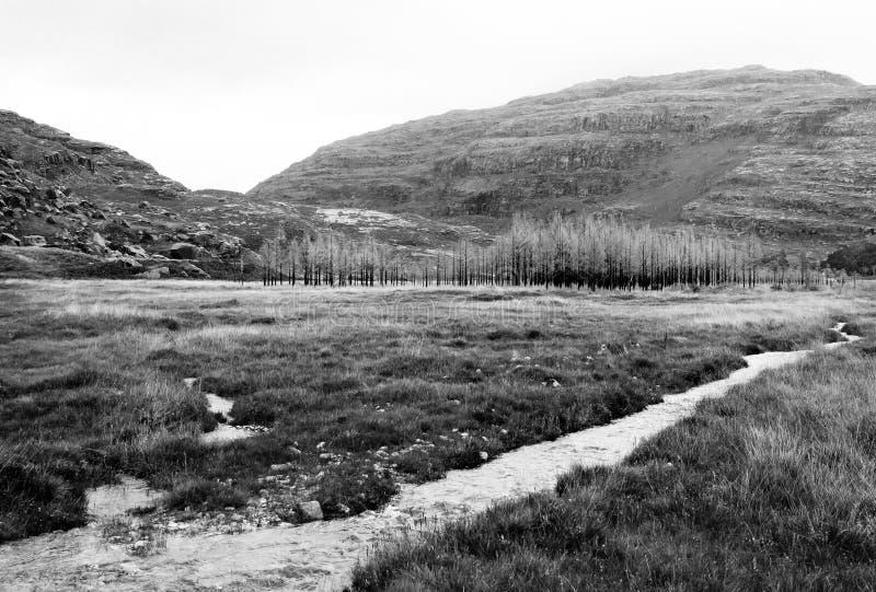 Skotsk flodhobygd Bild som förändras digitalt royaltyfri foto