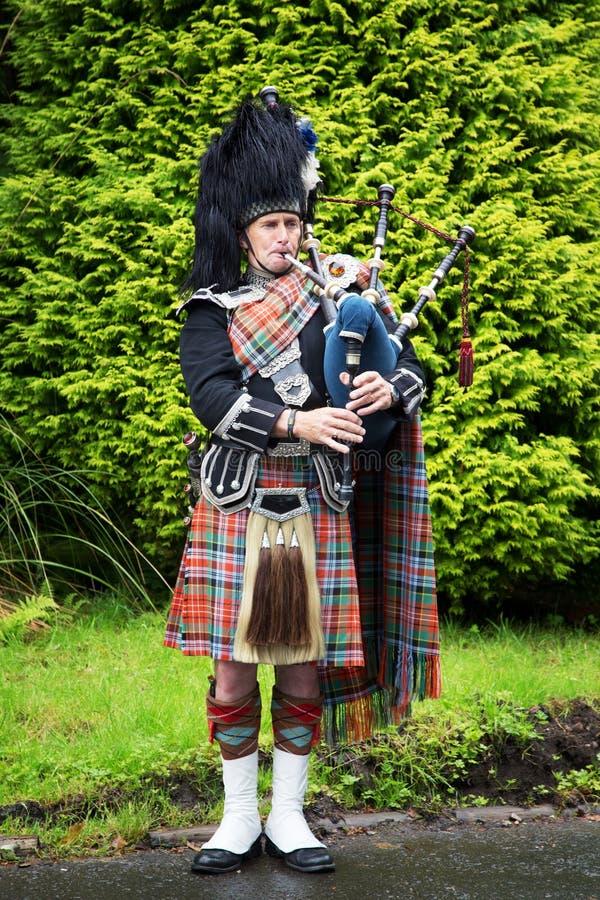 Skotsk pipblåsare arkivbilder