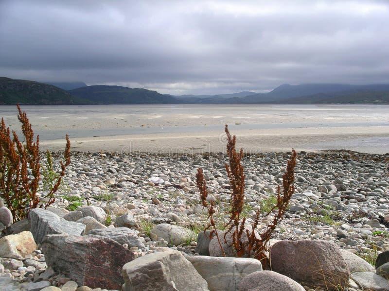 skotsk seacoast arkivbilder
