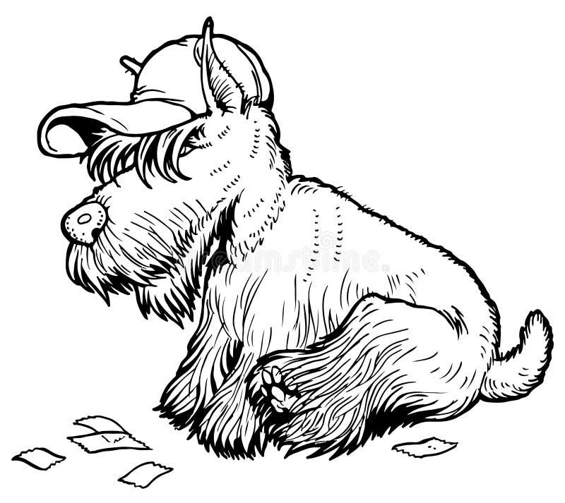 skotsk terrier stock illustrationer