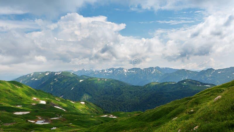 Skotska högländerna och gröna ängar Oshten Fisht i den Kaukasus reserven Caucasian reserv, berg, Krasnodar region royaltyfria bilder