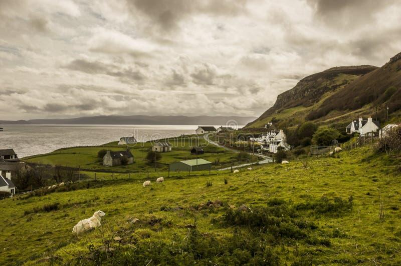 Skotska högländernalandskap royaltyfri bild