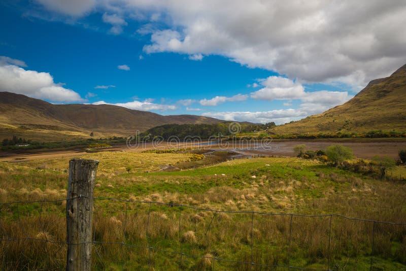 skotska högland royaltyfria foton