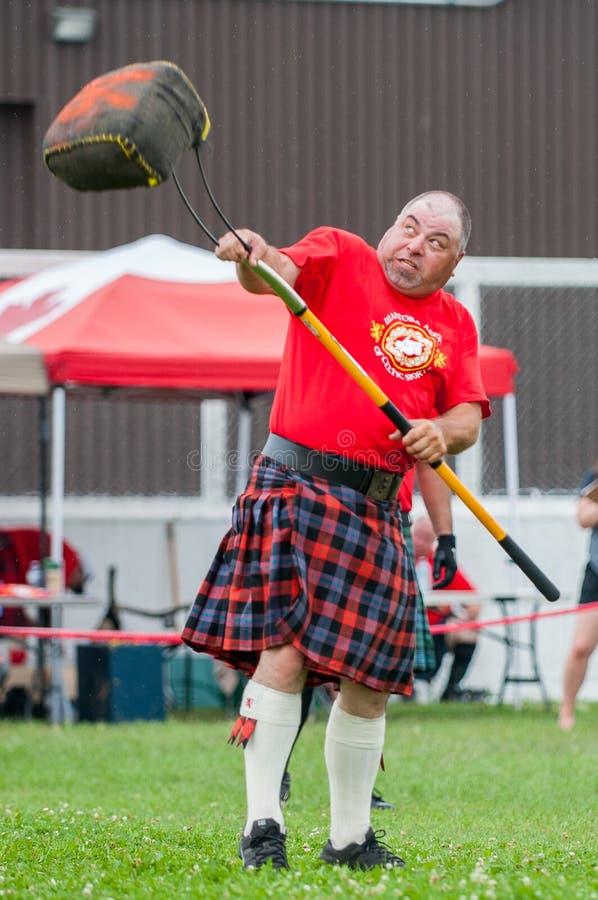 Skotska höglandlekar royaltyfri fotografi