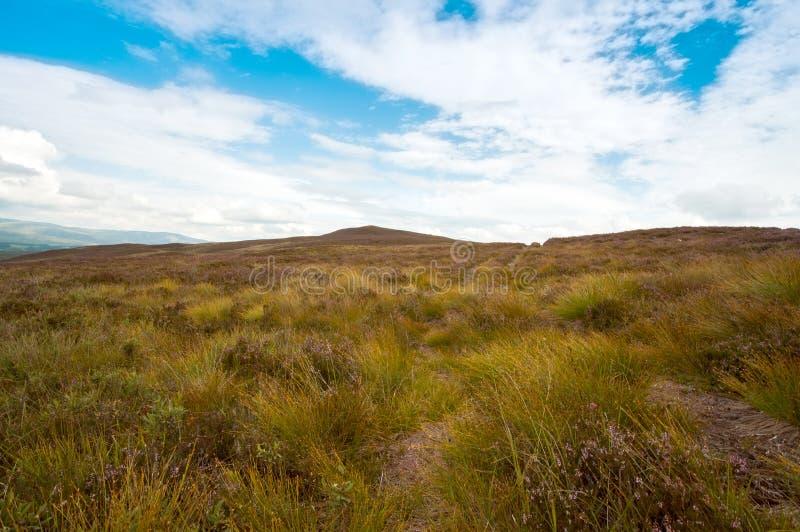 Skotskt berg arkivbild