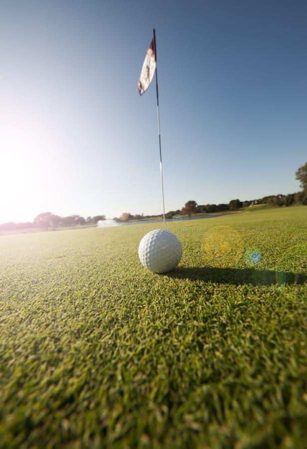 Skott för låg vinkel av golfboll på gräsplan royaltyfri foto