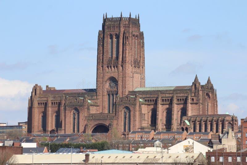 Skott som visar den anglikanska domkyrkan i Liverpool royaltyfri fotografi