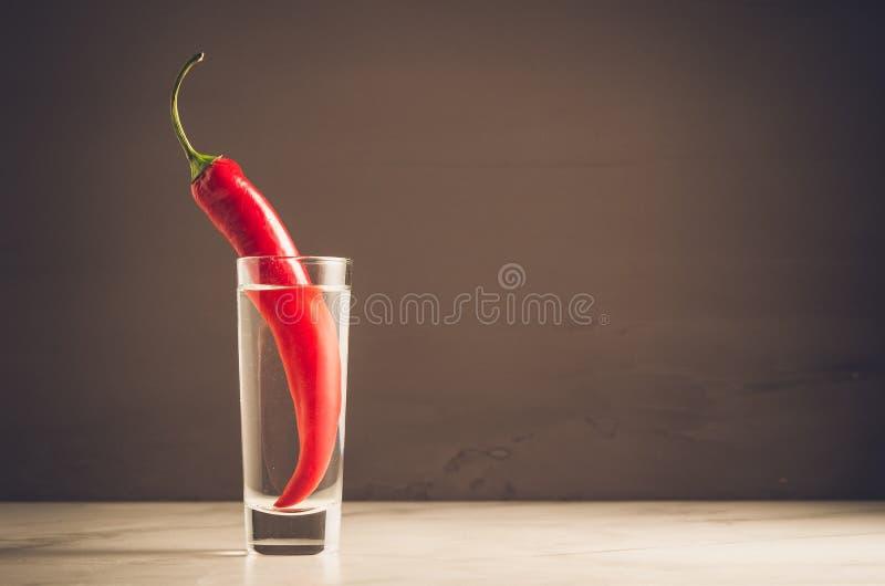 Skottet av vodka och röd peppar/sköt av vodka och röd peppar på en mörk bakgrund Selektiv fokus och copyspace royaltyfria bilder