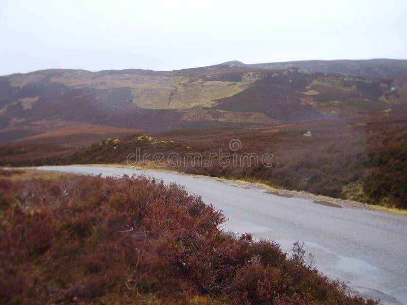 Skottland lanscape på skotsk högland 1 royaltyfri fotografi