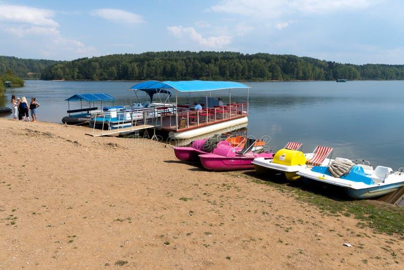 Skovel och turist- fartyg på sjön Vlasina, Serbien royaltyfria foton