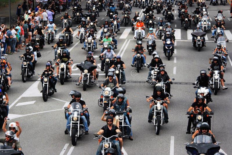 Skräddarsy cyklar royaltyfri bild
