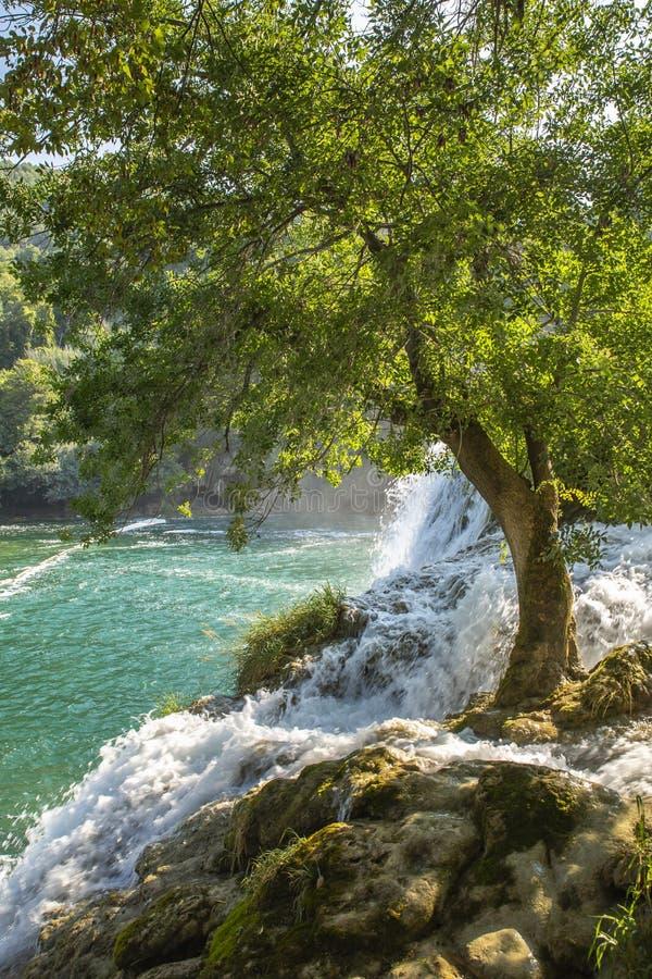 Skradinski Buk vattenfall i den Krka nationalparken - Dalmatia Kroatien, Europa arkivfoton