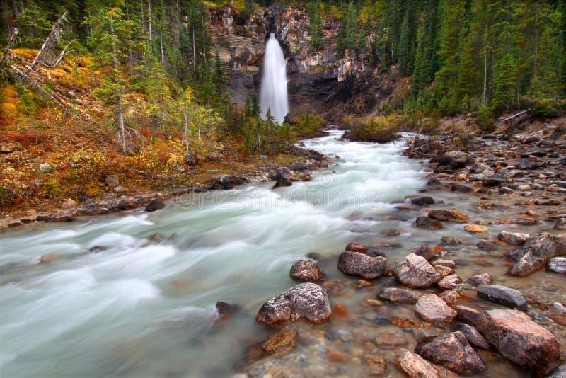 Skratta Falls - Yoho nationalpark royaltyfri foto