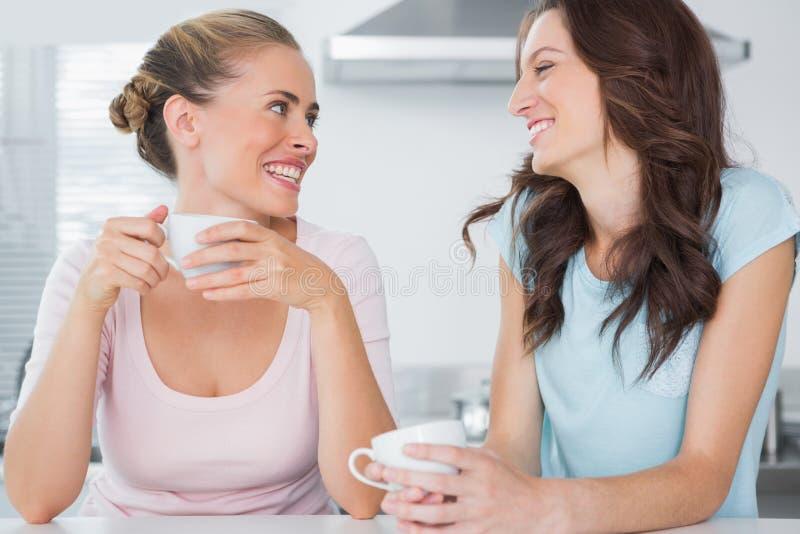 Skratta vänner som har koppen kaffe royaltyfri fotografi