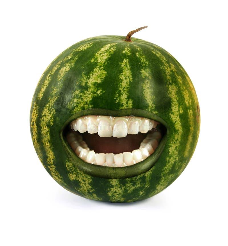 skratta vattenmelon royaltyfri bild