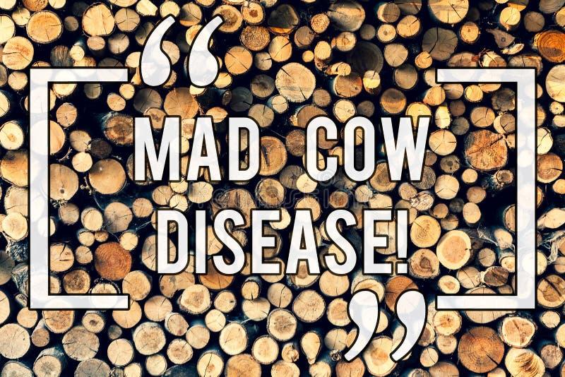 Skriva anmärkningsvisninggalna ko-sjukan Affärsfoto som ställer ut kött för äta Neurodegenerative för dödlig sjukdom smittsamt stock illustrationer
