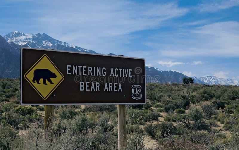Skrivande in aktivt björnområdestecken arkivbild