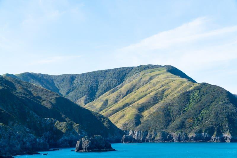 Skrivande in drottning Charlotte Sound i Marlborough ljud av den södra ön Nya Zeeland royaltyfri bild