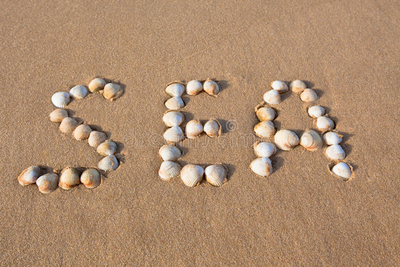 skrivet ord för skal för strandsandhav fotografering för bildbyråer