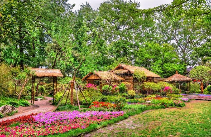 Skromnie administratora ogród wielki ogród w Suzhou obrazy royalty free