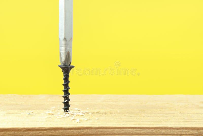 Skruvskruven är skruvmejsel i ett träskivor Stängning av byggnadsarbeten Skruva mot gul bakgrund royaltyfria bilder
