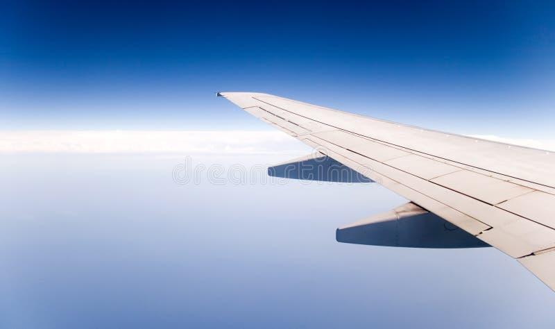 skrzydła. zdjęcia royalty free