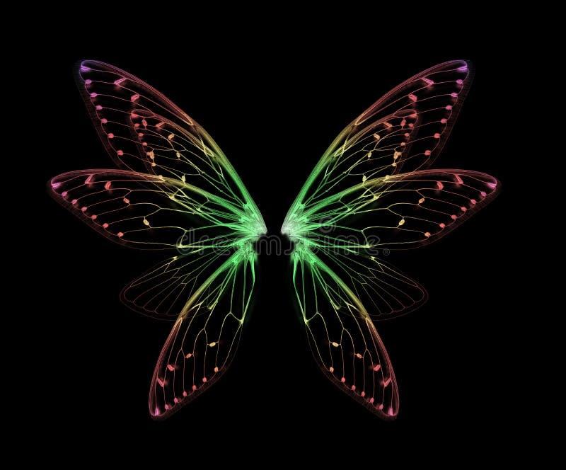 Skrzydła insekt cykada na czarnym bacground zdjęcia royalty free
