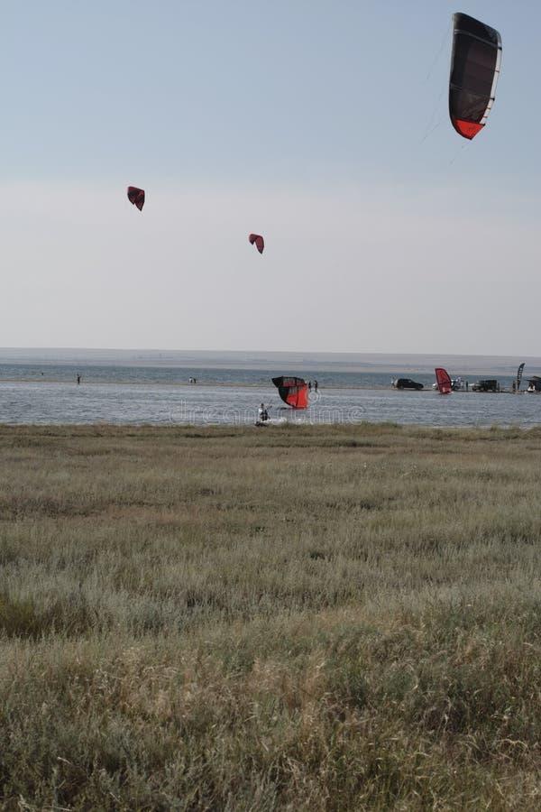 Skrzydła w niebo surfingowach na wodzie zdjęcia stock