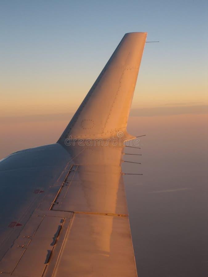 skrzydła z nieba obrazy stock