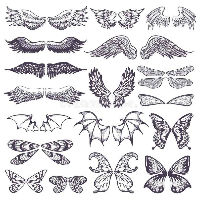 Skrzydło wektorowy latający oskrzydlony anioł z skrzynką ptak i motyl z wingspan rytmu ilustracyjnym czarnym tatuażem fotografia stock