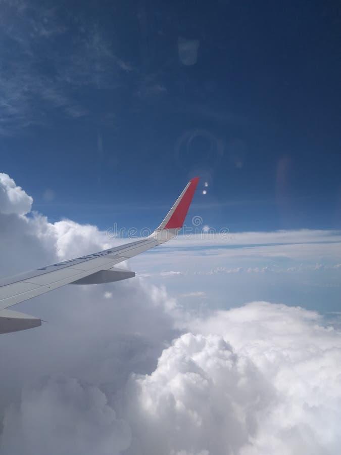 Skrzyd?a samolot w niebie zdjęcia royalty free