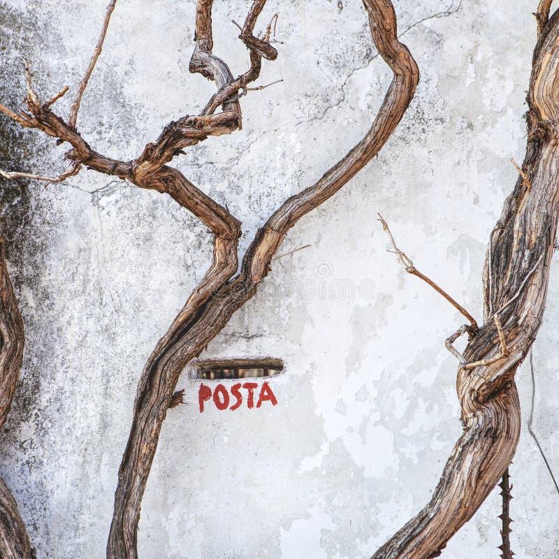 skrzynka włoskiej zdjęcie royalty free