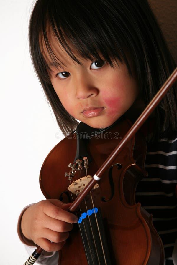 skrzypce. fotografia royalty free